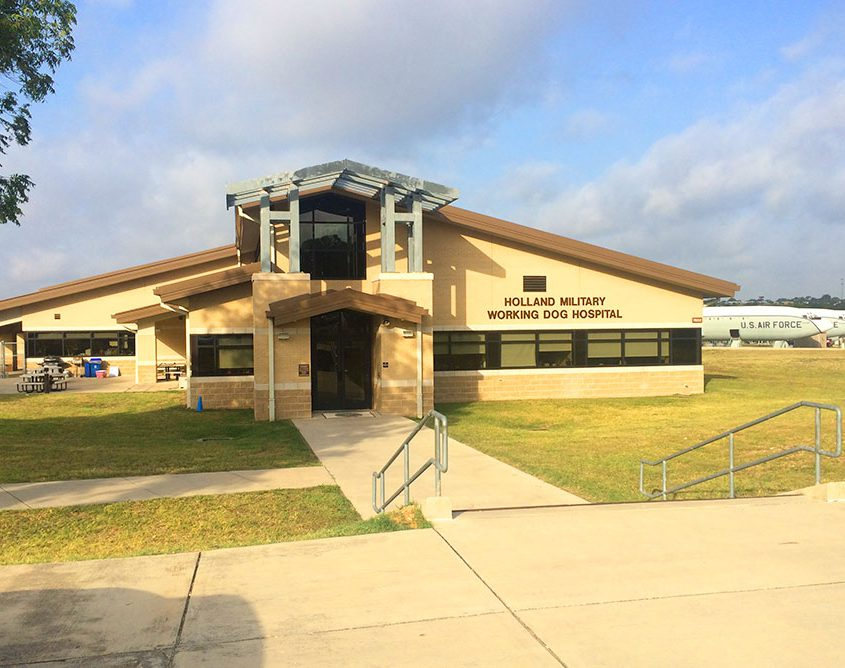 Steel Building Dog Hospital - TX