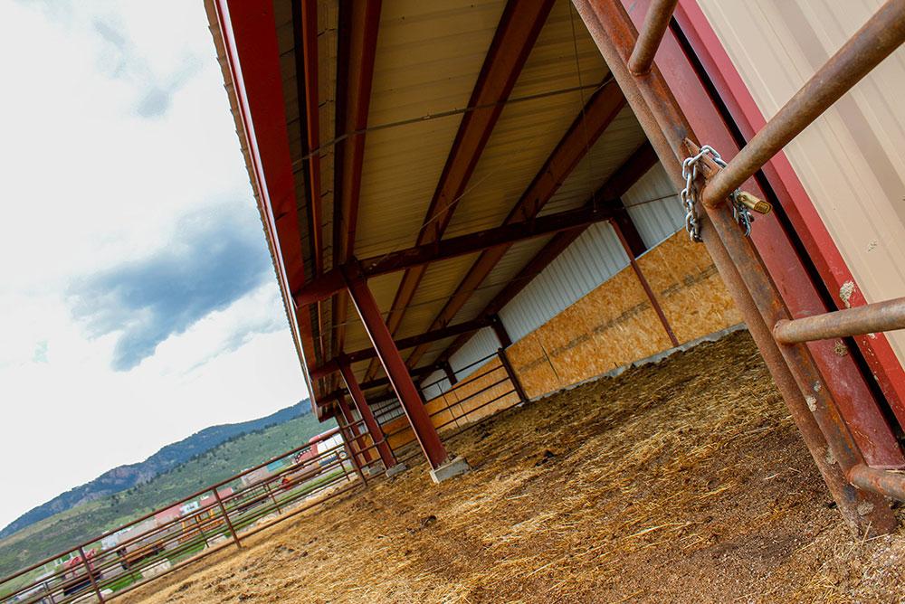 Metal Horse Shelter