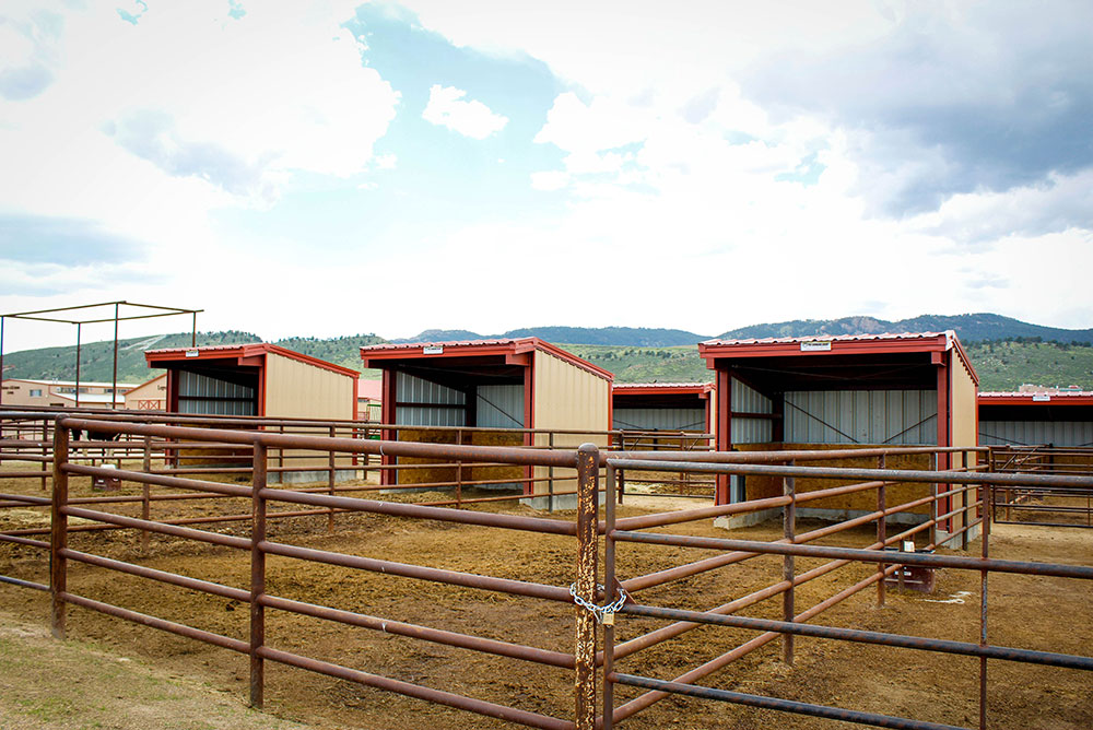 Metal Shelter Buildings