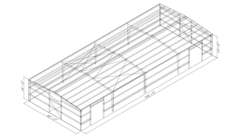 40x100 Wireframe Drawing